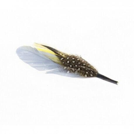Feather for hat - Chapellerie ile de Ré