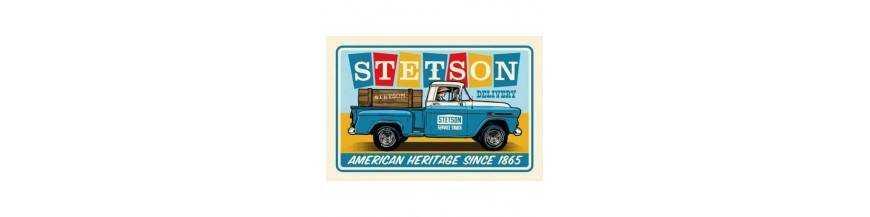 Decoration Stetson metal Chevrolet pickup